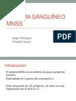 Presentacion Mns