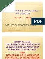 7 Region Puno1