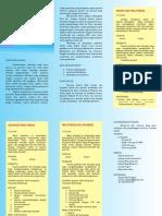 Leaflet Multimedia