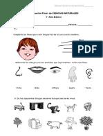 PDF.Final Ciencias  1° Básico