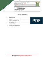 Informe-circuitos-residenciales. (1).docx