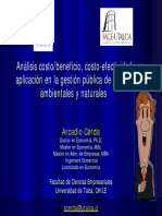 ArcadioCerda_analisis_costo-beneficio_ambiental.pdf