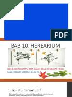BAB 10 Herbarium by Na2CL