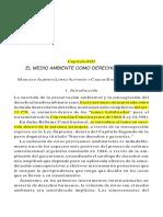 El Medioambiente Como Derecho Humano - López Alfonsín y Tambussi