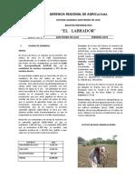 CASCARILLA DE ARROZ COSTOS.pdf