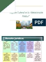 regimen laboral publico y privado.ppt