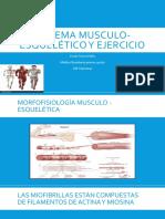 Sistema Musculo-esquelético y Ejercicio
