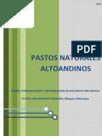 Pastos Altoandinos_Milagros Malpartida
