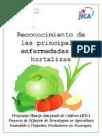 HORTALIZAS .pdf