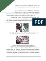 Paineis de Bambu Para Habitacoes Economicas 2006_152