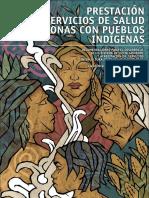 Servicios Salud Zonas Indigenas