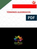 terminos algebraicos