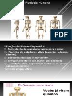 Anatomia e Fisiologia Humana Aula 1
