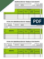 Ficha de Observación - Trabajo en Equipo - Grupal