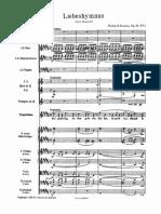 IMSLP133084-PMLP92890-Richard_Strauss_-_Liebeshymnus.pdf