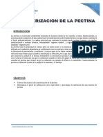 Caracterizacion de la Pectina...En proceso..docx