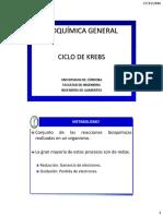 1.6 - CICLO DE KREBS