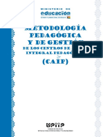 METODOLOGÍA DEL PROGRAMA CAIP.pdf