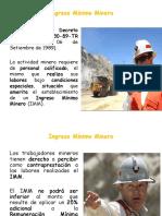 (1) IMM y Día Del Minero (Aqp)