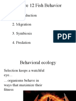 12 Behavior of Fish