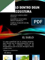 El Suelo Dentro Deun Ecosistemat... Jjj