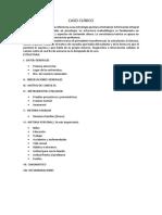 PRESENTACION 2016 I.docx