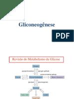 Gliconeogenese e via Das Pentoses Fosfatos
