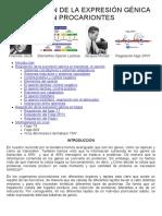 23-Regulación de la expresión génica en procariontes.pdf