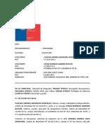 DEMANDA ADOPCIÓN.docx