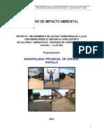 Estudio de Impacto Ambiental VIAS TRANSVERSALES