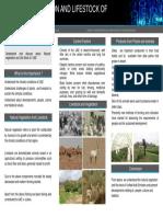 Natural Vegetation and Lifestock of Uae