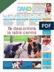 El-Ciudadano-Edición-238