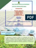 Cosecha y Comercializacion de La Cultivos 1