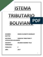 Derecho Tributario INFORMEEEE MARIA