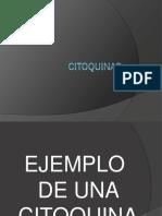 CITOQUINAS (1).pdf