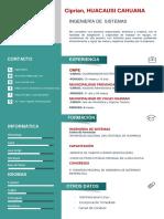 Plantilla Curriculum Vitae 10