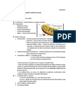 2. Mec. de lesion y muerte cel (21-08).docx