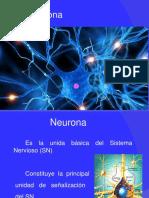 Clase Neurona 2017