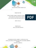Fase 2 Colaborativa Construccion de Indicadores Ambientales