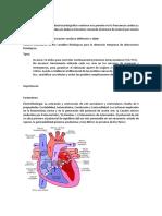 Monitoreo Cardiaco