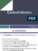 6 Carbohidratos