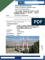 326699847 Informe Visita Puente Comuneros