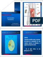 Digestivo Sindr Icterico y Colestasico Fono Tem 2009