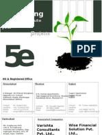 5e consulting company profile