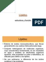 lipidos-1221940672195509-9