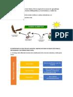 medio ambiente y sociedad II.docx