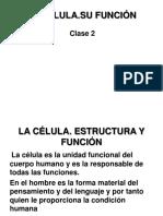 Clase 2.La Célula