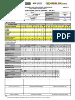 Formato Pap 2018 - Nivel Primaria