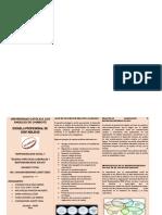 TRIPTICO BUENAS PRACTICAS RESP IV.docx