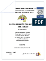 acrtelProgramacion-curricular-COMUNICACIÓN.docx